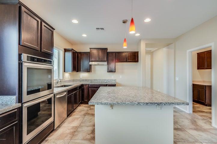 28342 N CACTUS FLOWER Circle, San Tan Valley, AZ 85143