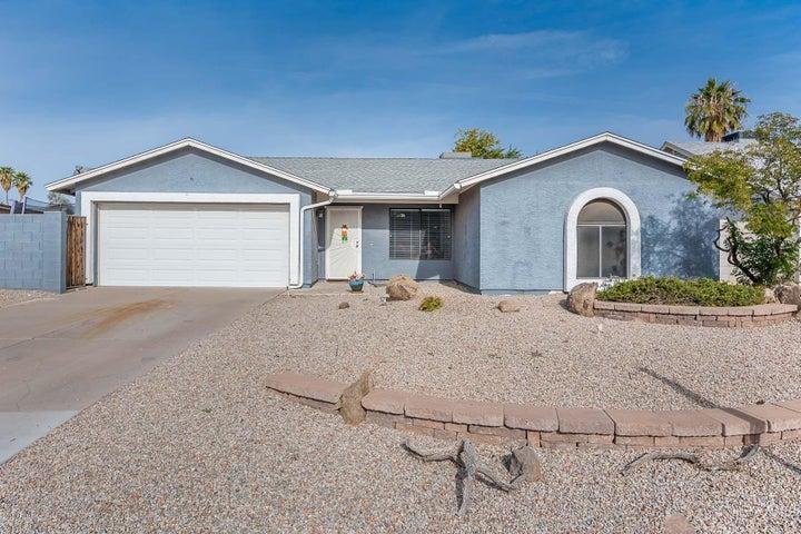 696 W MESQUITE Street, Chandler, AZ 85225