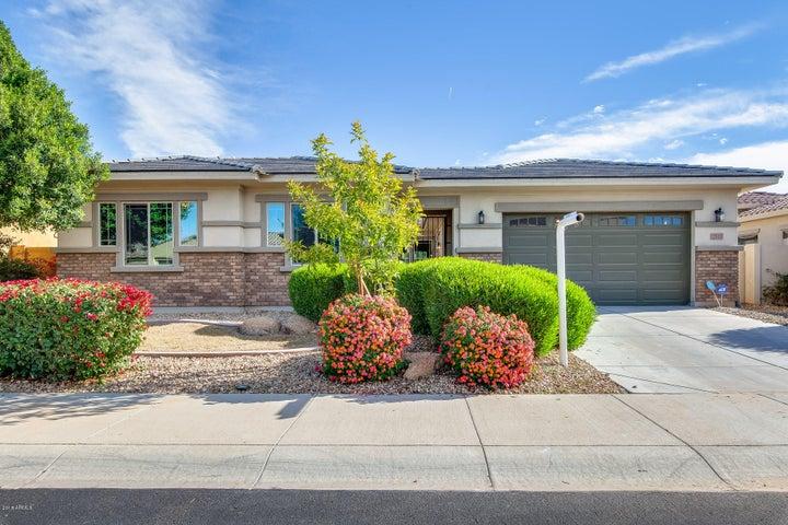 2313 N 156TH Drive, Goodyear, AZ 85395