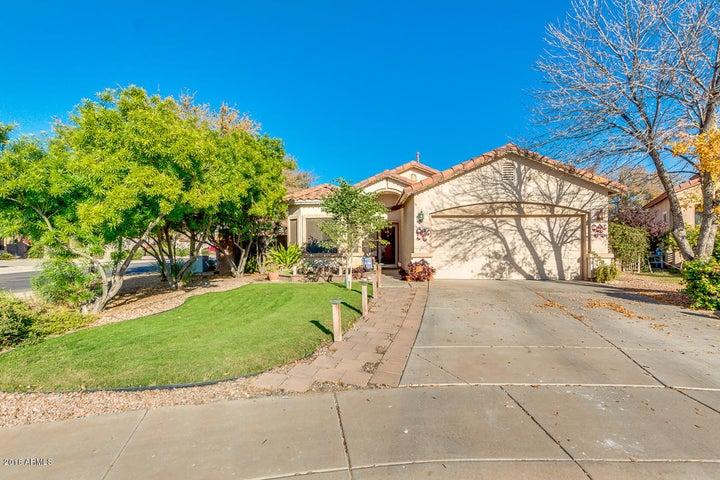 2901 E CATHY Drive, Gilbert, AZ 85296