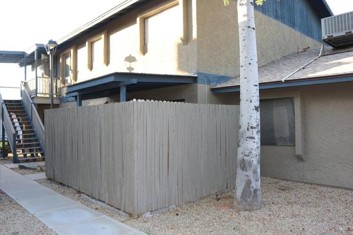 286 W Palomino Drive, 198, Chandler, AZ 85225