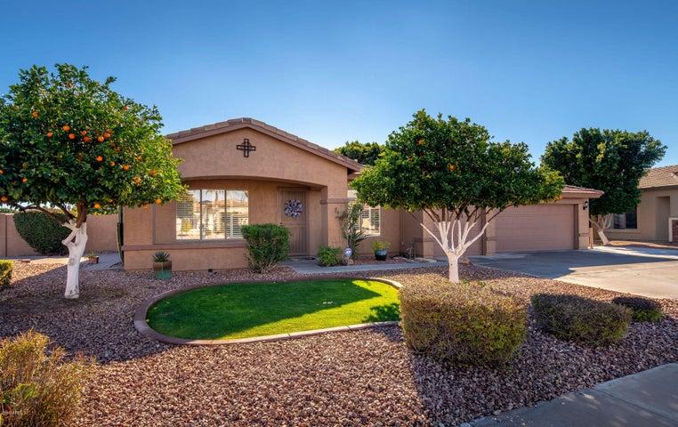 4705 E DARTMOUTH Street, Mesa, AZ 85205