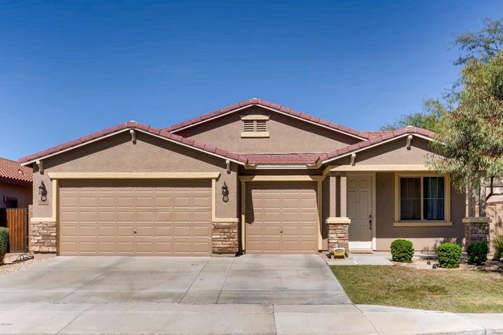 9134 W HEDGE HOG Place, Peoria, AZ 85383