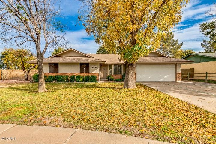 1239 S LOMA VISTA Street, Mesa, AZ 85204