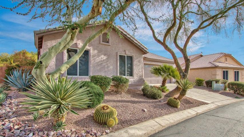 9220 E CEDAR BASIN Lane, Gold Canyon, AZ 85118