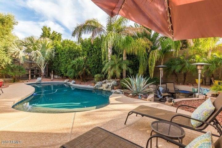 2021 W CALEB Road, Phoenix, AZ 85085