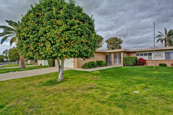 9538 W OAK RIDGE Drive, Sun City, AZ 85351