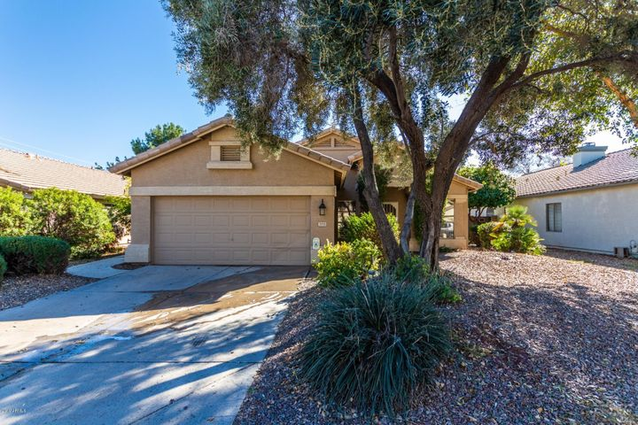 3953 E LEXINGTON Avenue, Gilbert, AZ 85234