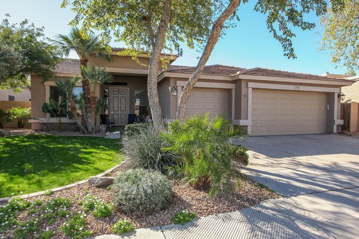 789 W EBONY Way, Chandler, AZ 85248
