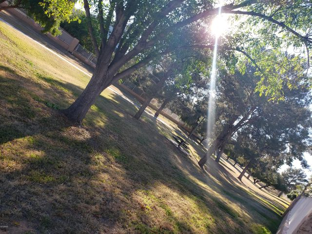 Gorgeous park with direct access from back yard!