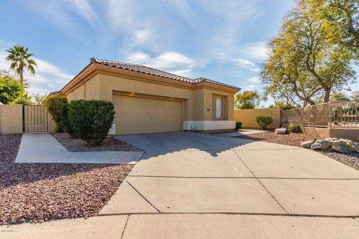 943 W Raven Drive, Chandler, AZ 85286