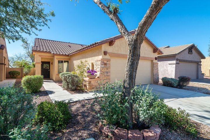 10805 E SURVEYOR Court, Gold Canyon, AZ 85118