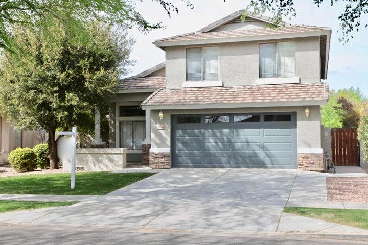 3544 E BRUCE Avenue, Gilbert, AZ 85234