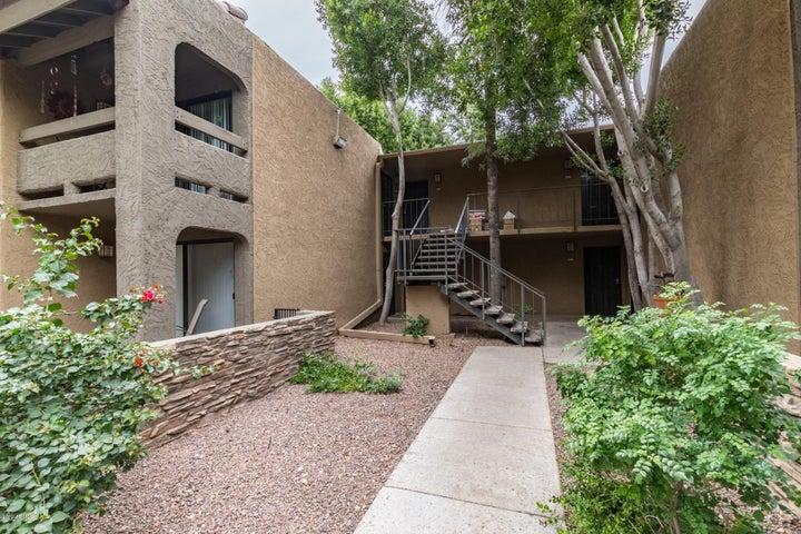 3825 E CAMELBACK Road, 207, Phoenix, AZ 85018