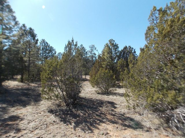 3143 TONTO Drive, 245, Overgaard, AZ 85933