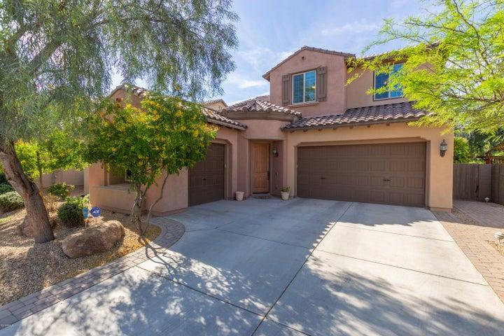 3773 E RINGTAIL Way, Phoenix, AZ 85050