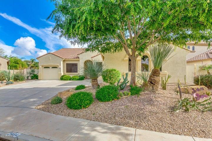 2894 E WESTCHESTER Drive, Chandler, AZ 85249