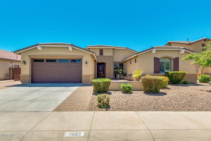 1443 E PRESCOTT Place, Chandler, AZ 85249