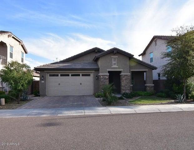 277 E KAIBAB Drive, Chandler, AZ 85249