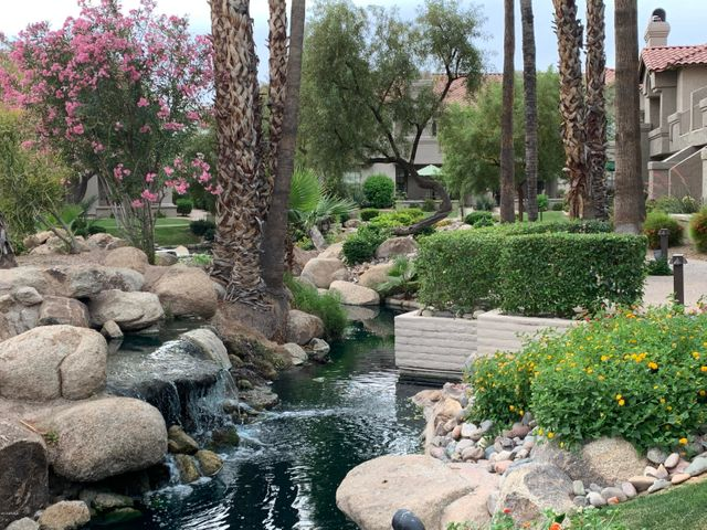 The Fountains! Lush Manicured Gardens and Water Features
