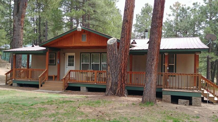 1238 MERZVILLE Road, Forest Lakes, AZ 85931