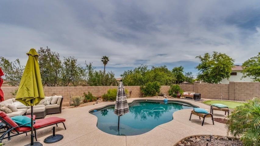 1134 E PEDRO Road, Phoenix, AZ 85042