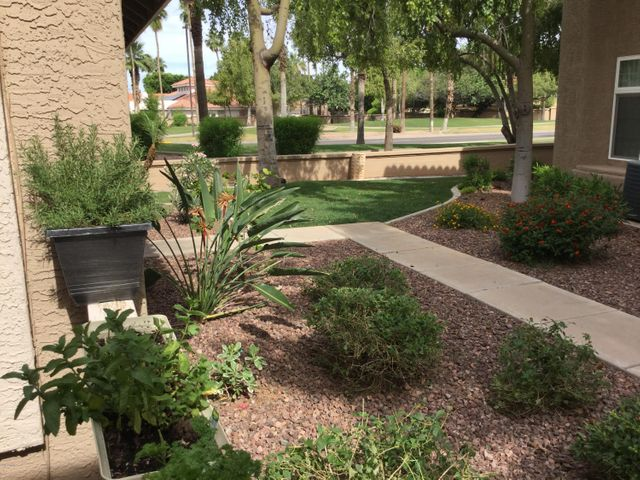 1633 E LAKESIDE Drive, 31, Gilbert, AZ 85234