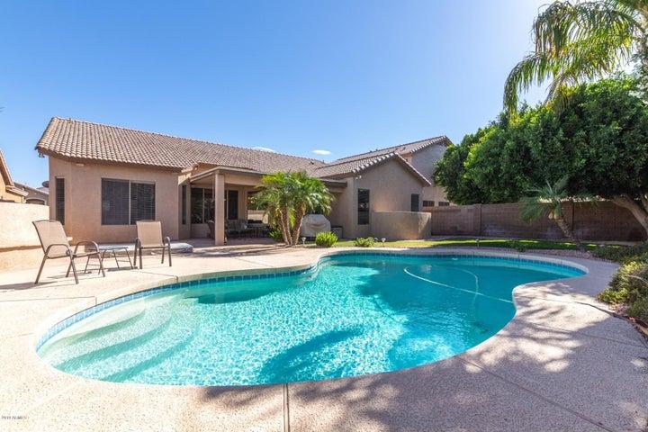 550 E ORCHID Lane, Gilbert, AZ 85296