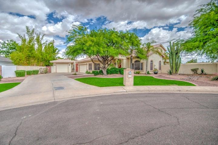 4628 E ENROSE Circle, Mesa, AZ 85205