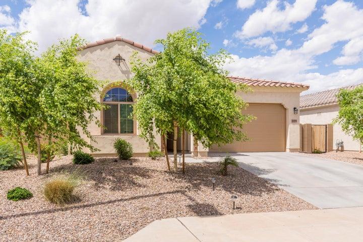 20160 W Hadley Street, Buckeye, AZ 85326