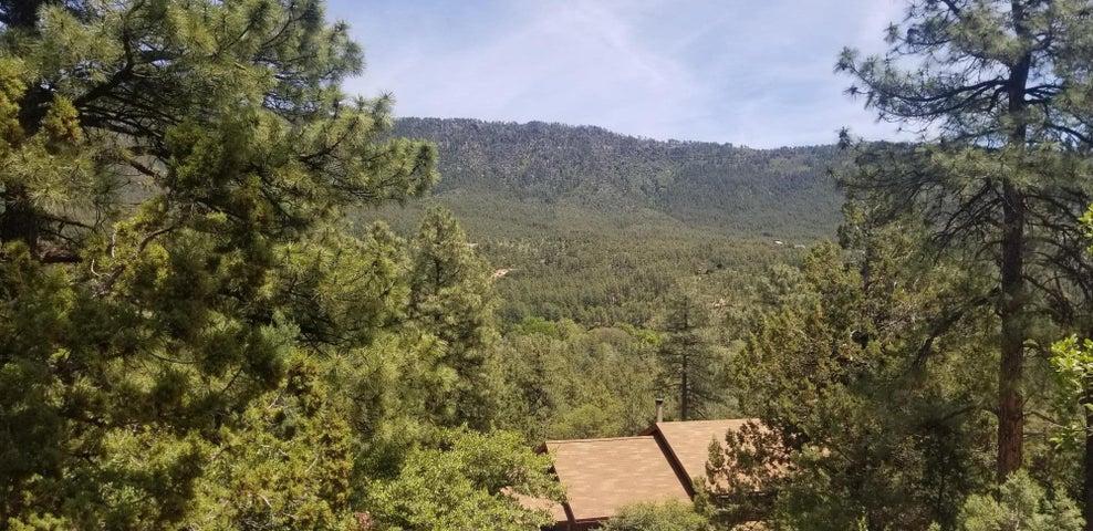 4802 N Canyon Vista, Pine, AZ 85544