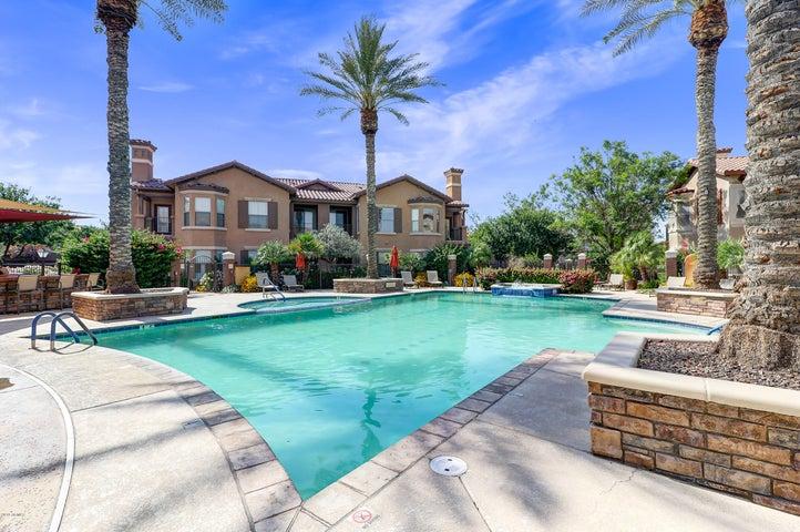 14250 W WIGWAM Boulevard, 923, Litchfield Park, AZ 85340