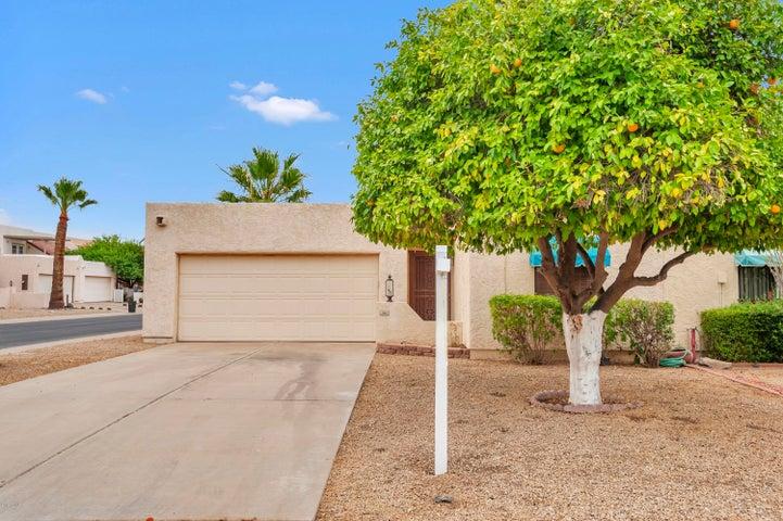 313 S DESERT Avenue, Litchfield Park, AZ 85340