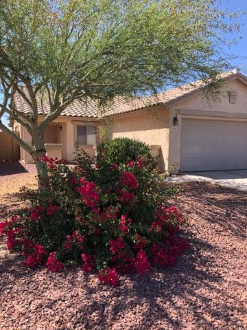 Beautiful low maintenance desert landscape in front yard