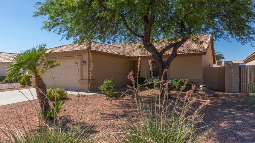 10522 W POTTER Drive, Peoria, AZ 85382