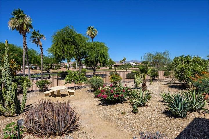 3124 N COUPLES Drive, Goodyear, AZ 85395