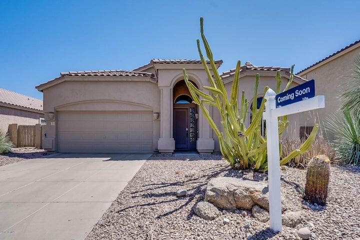 3055 N RED MOUNTAIN, 171, Mesa, AZ 85207