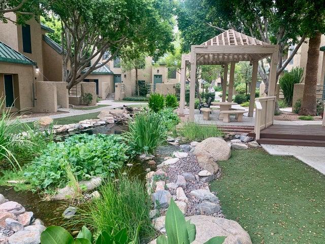 101 N 7th Street, 245, Phoenix, AZ 85034