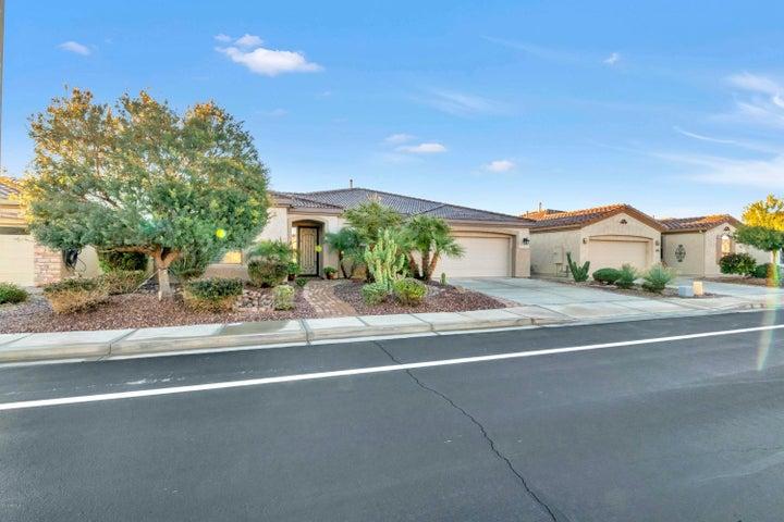 4383 E FICUS Way, Gilbert, AZ 85298