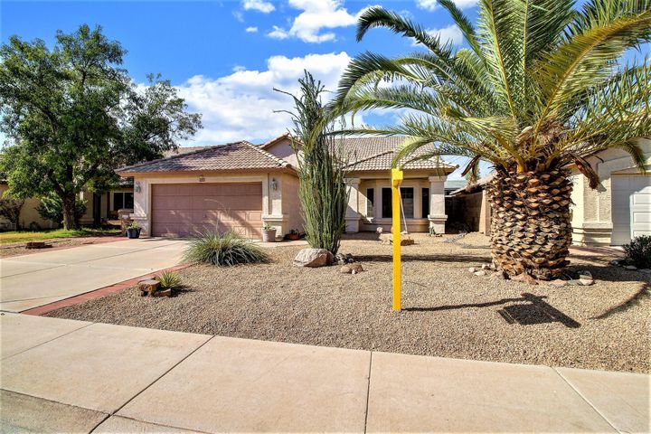 Front of 7532 W Cameron Dr. Peoria, AZ 85345 with FABULOUS Landscape by Design. Check out that Pineapple Tree.