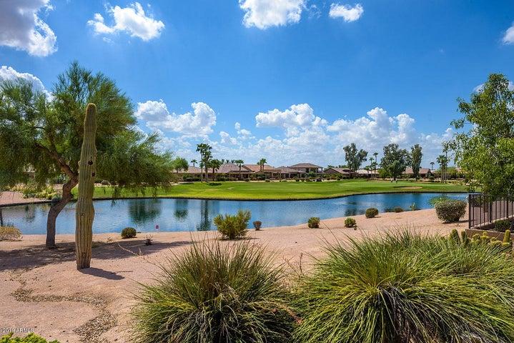 16161 W WINDSOR Avenue, Goodyear, AZ 85395