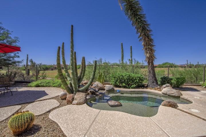 34660 N 93RD Place, Scottsdale, AZ 85262