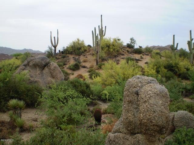 26072 N 115TH Place, Scottsdale, AZ 85255