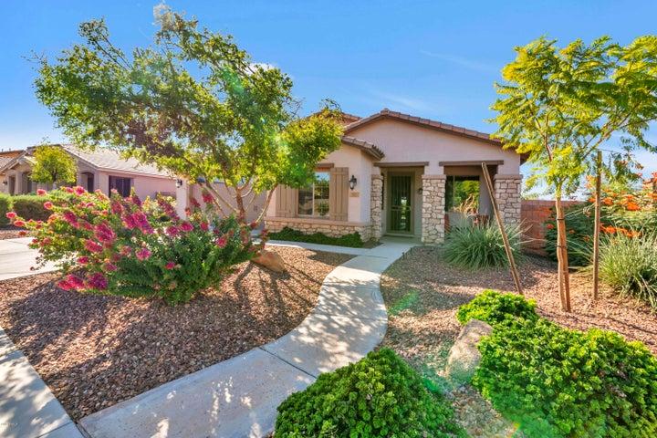 581 W POWELL Way, Chandler, AZ 85248