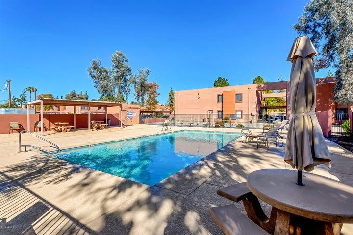 330 S Beck Avenue, 226, Tempe, AZ 85281