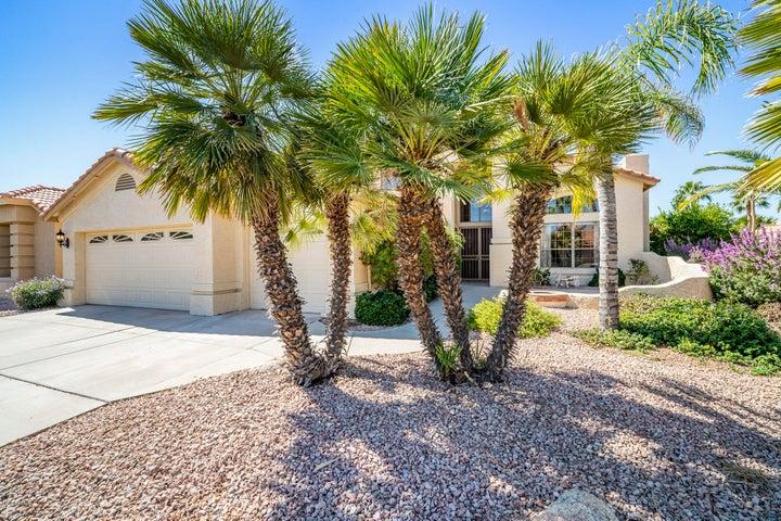 9011 E CEDAR WAXWING Drive, Sun Lakes, AZ 85248