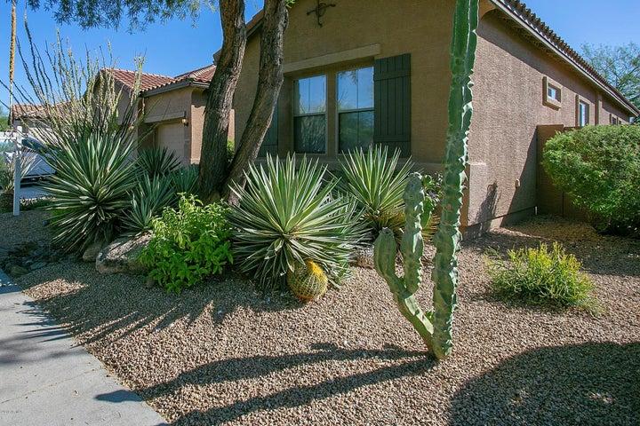 2341 W Bramble Berry Lane, Phoenix, AZ 85085