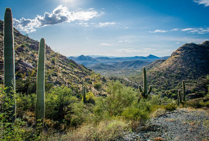 The ideal hideaway. Its your own private gated park, with bubbling artesian wells in the desert, and a Garden of Eden. On the high country, a noted architect has identified 5 or 6 view homesites as you travel up the mountain. This view toward the West is from the property!