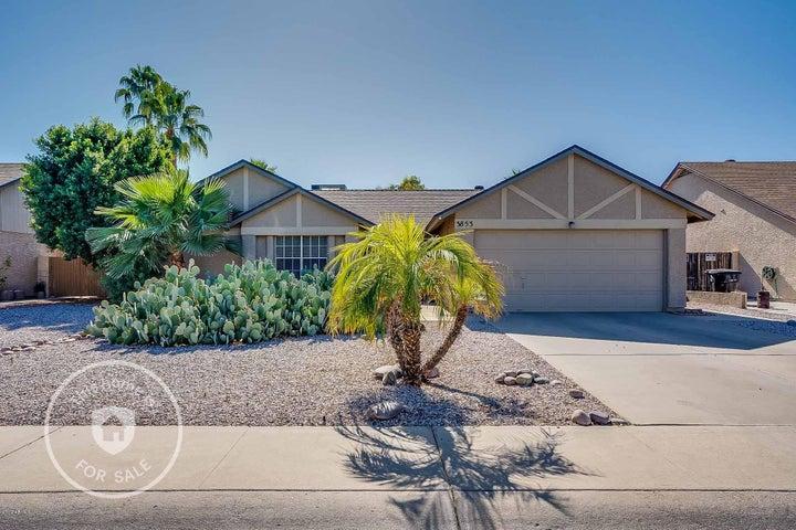 3853 W LAREDO Street, Chandler, AZ 85226