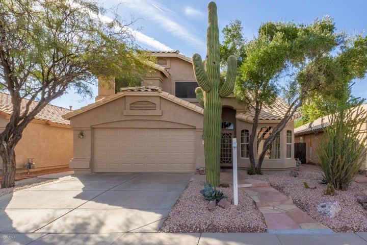 1150 S CHOLLA Street, Chandler, AZ 85286